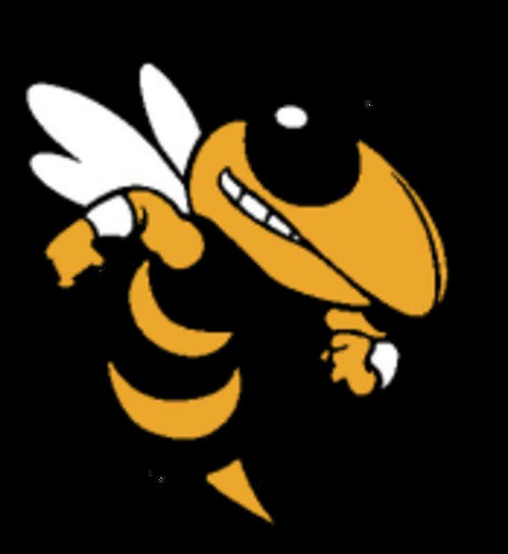 races buda tx. Hornet clipart green hornet