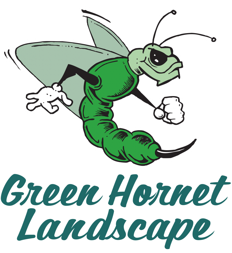 Landscaping services consulting. Hornet clipart green hornet