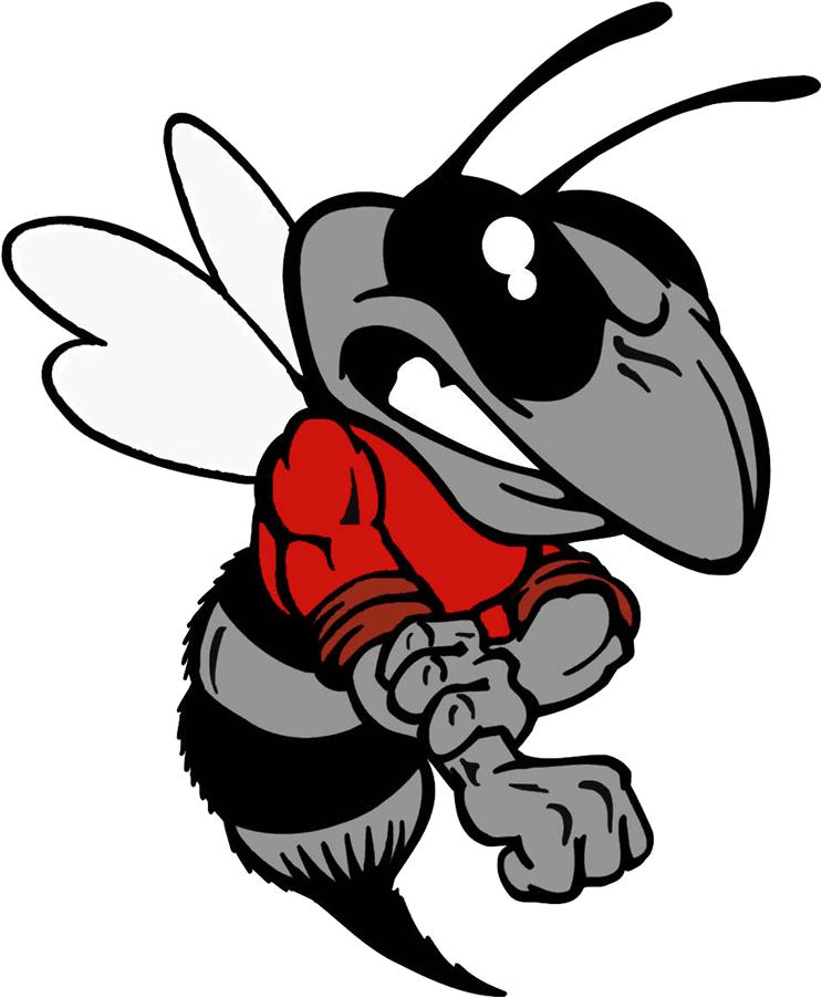 Hornet clipart greenville. Schedule hancock county hornetss