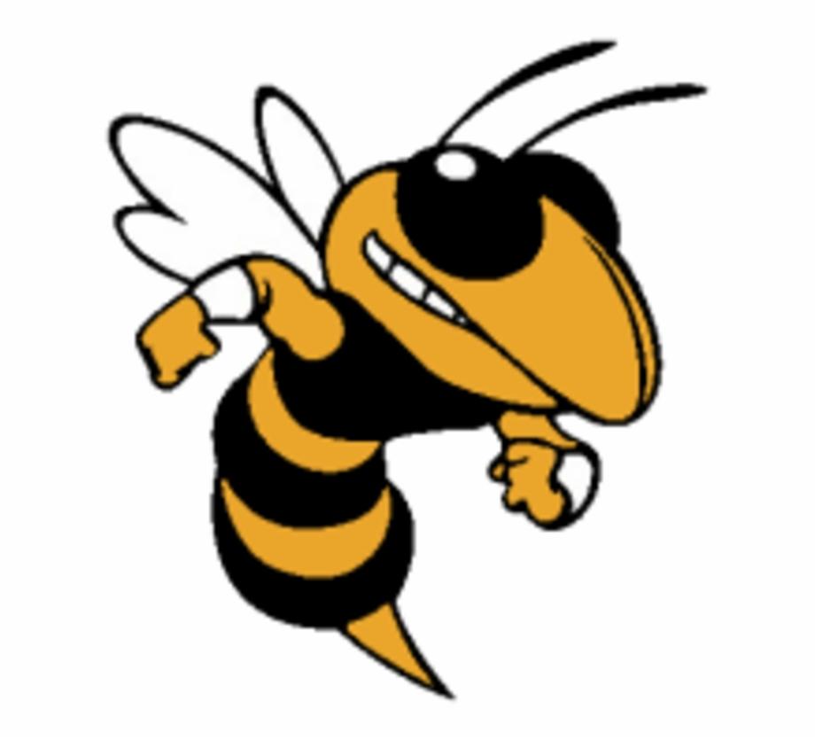 Free png images download. Hornet clipart logo