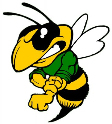 Hornet clipart mad. Mascots free download best