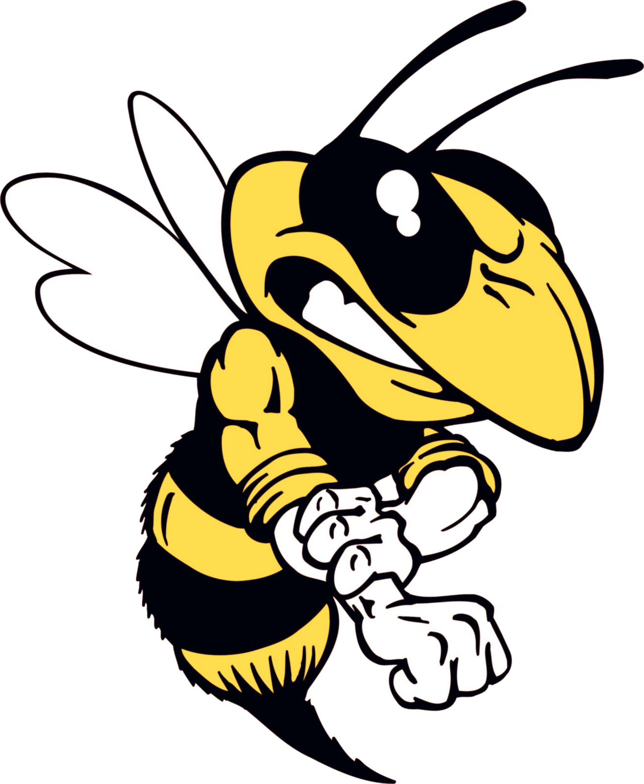 Hornet clipart mad. Antiphospholipid and pesticides effects