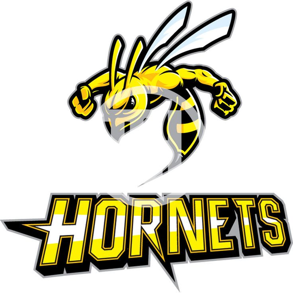 Free images at clker. Hornet clipart mascot