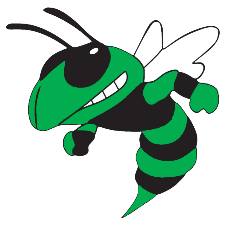 Albany free on dumielauxepices. Hornet clipart midwood