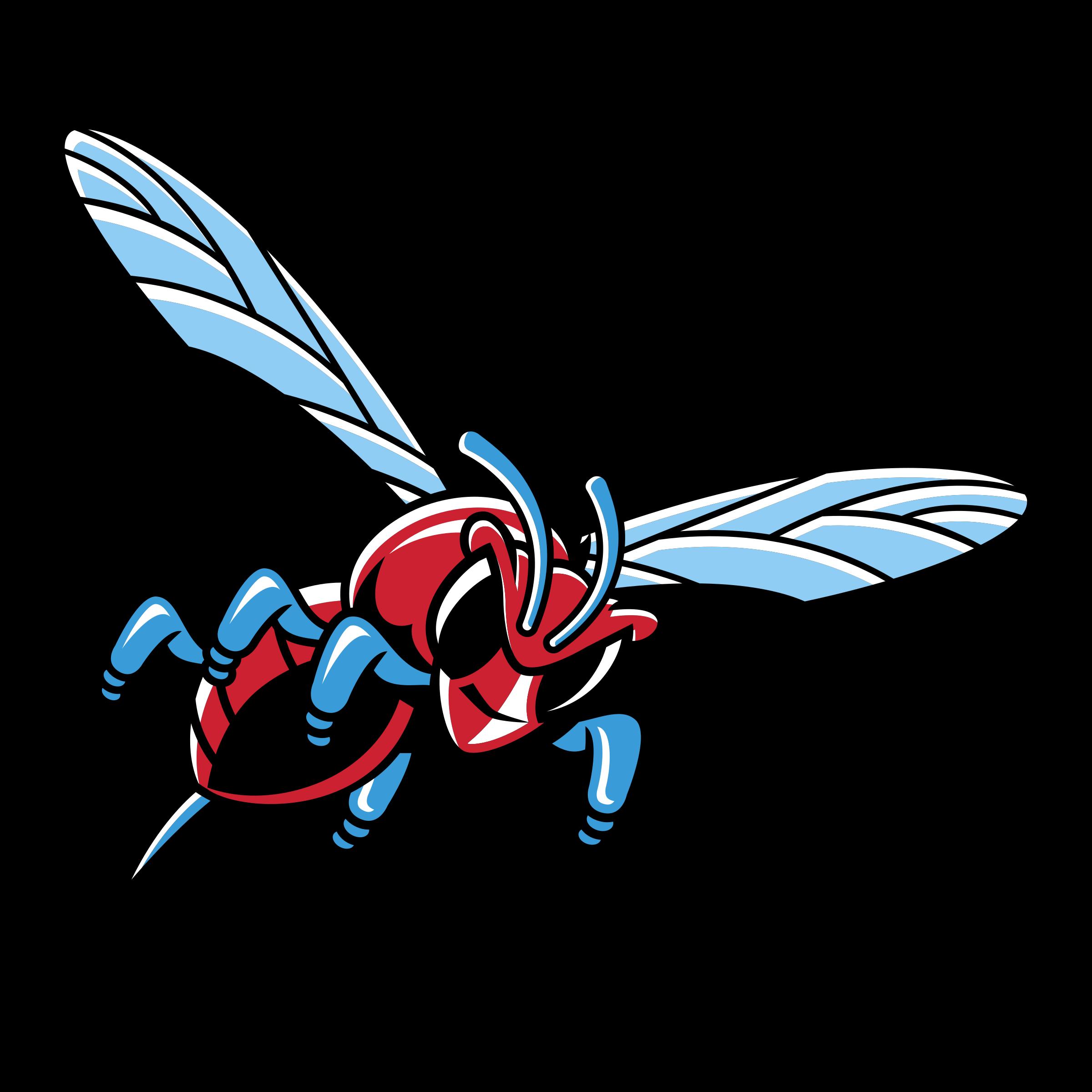Hornet clipart svg. Delaware state hornets logo