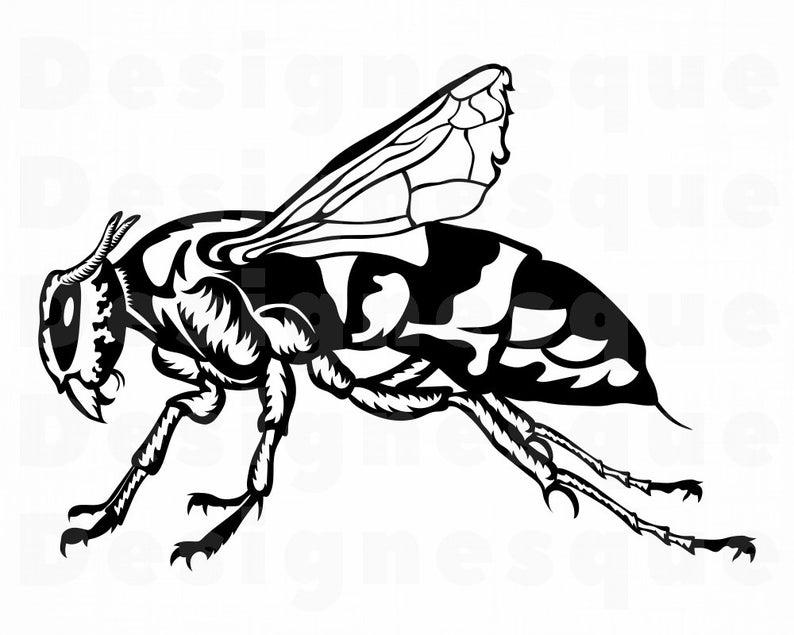 Files for cricut cut. Hornet clipart svg