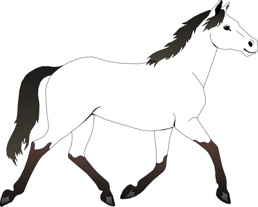 Horses clipart halloween.  collection of black