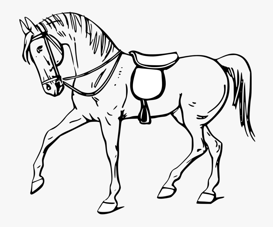 Mustang clipart horse coloring. Black and white colouring