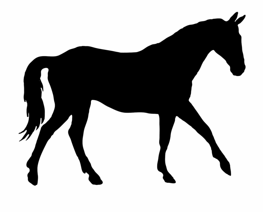 Silhouette of free png. Horse clipart elegant