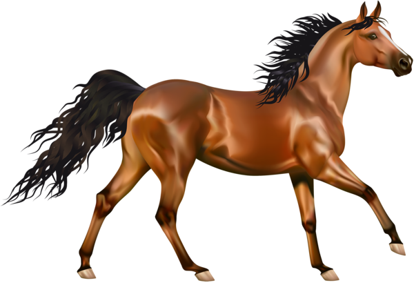 Horse clipart equine. Brown background