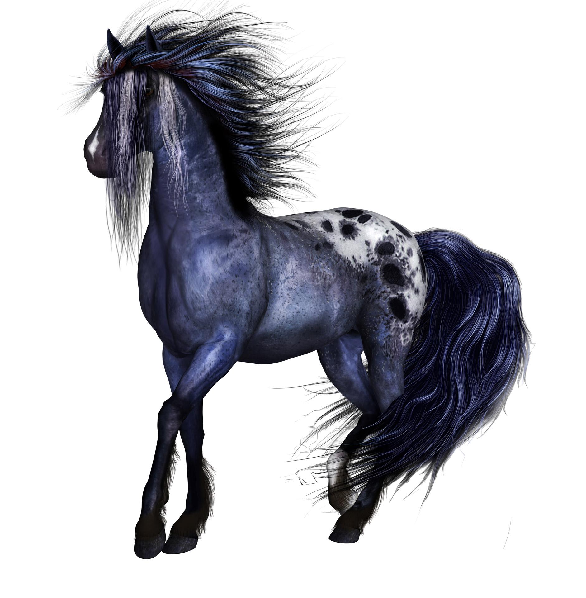 Horse clipart equine. Fantasy tube horses art