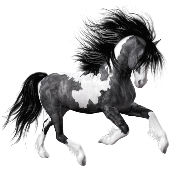 Gallery free pictures . Horse clipart fire