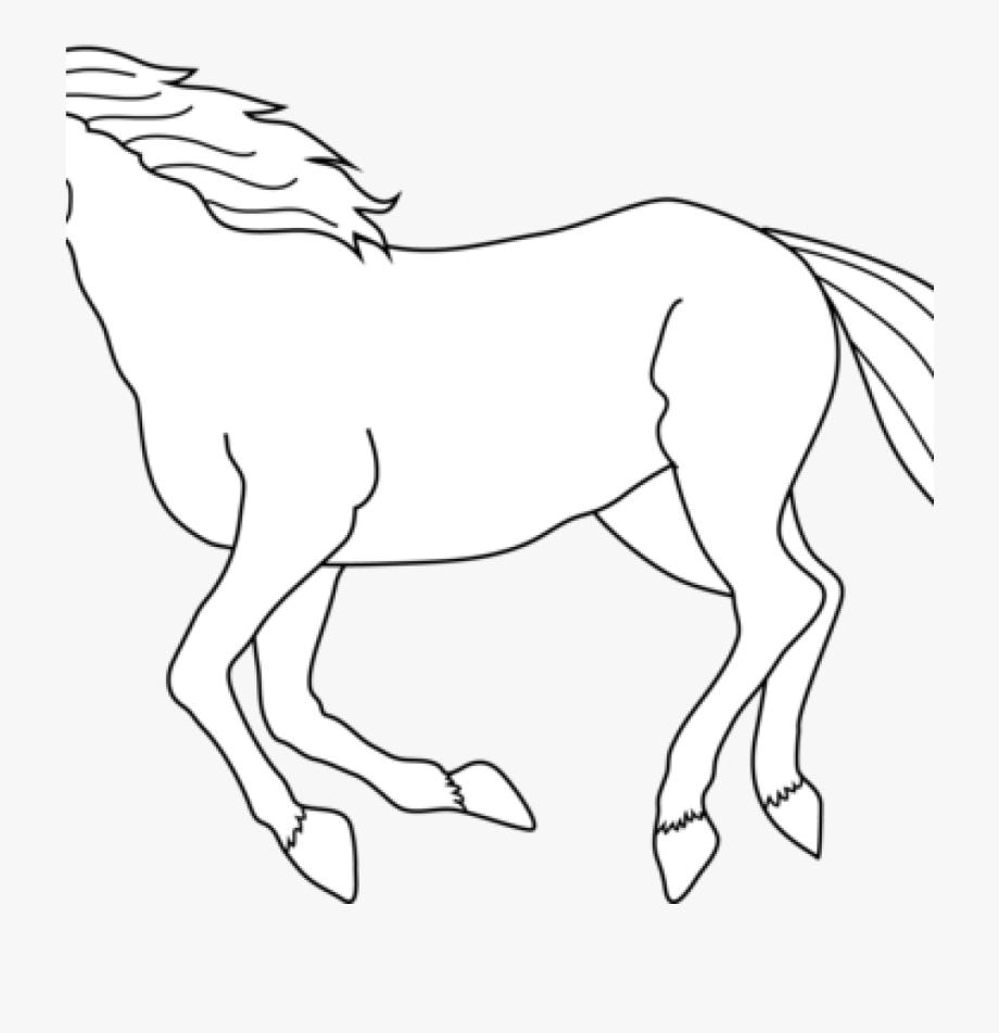 Horse clipart line art. Black and white clip