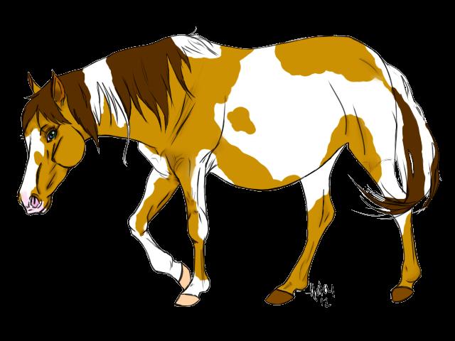 Horse mare