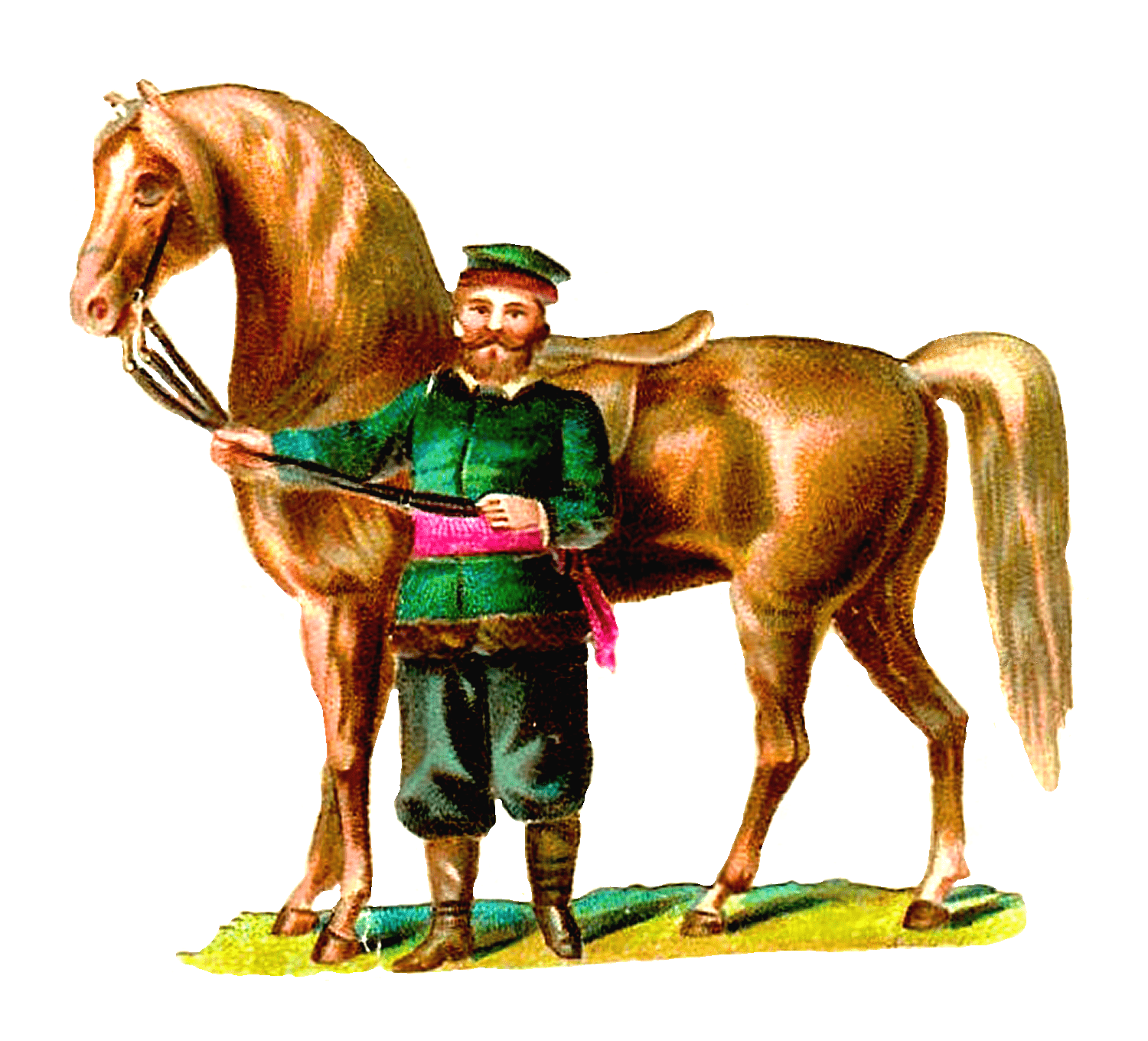 Horses clipart glitter. Collection of free haltering