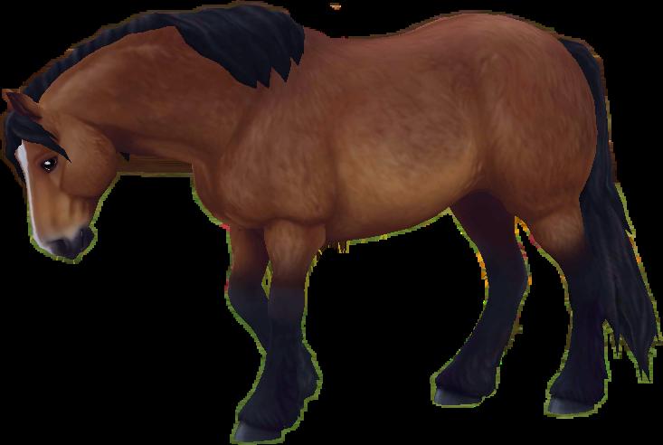 Horses clipart stable. Sso starstable free horse
