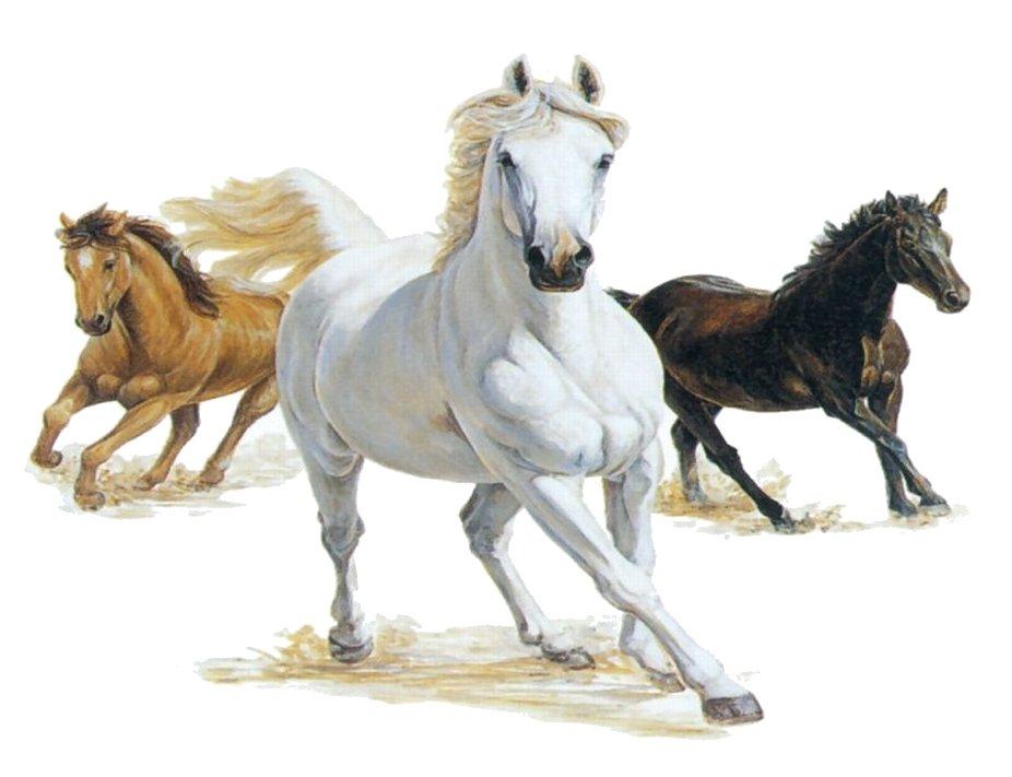 Horses clipart.  running