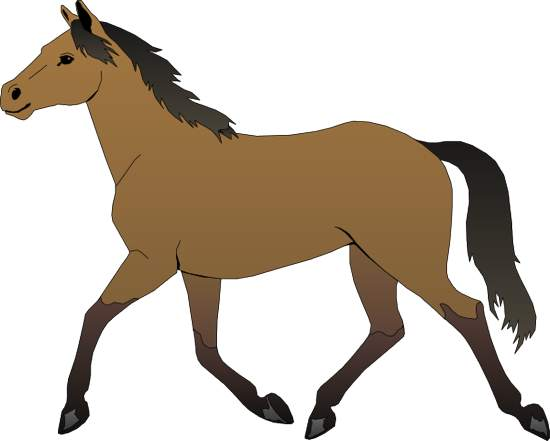 Gallery . Horses clipart