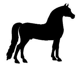 Head silhouette free download. Horses clipart morgan horse