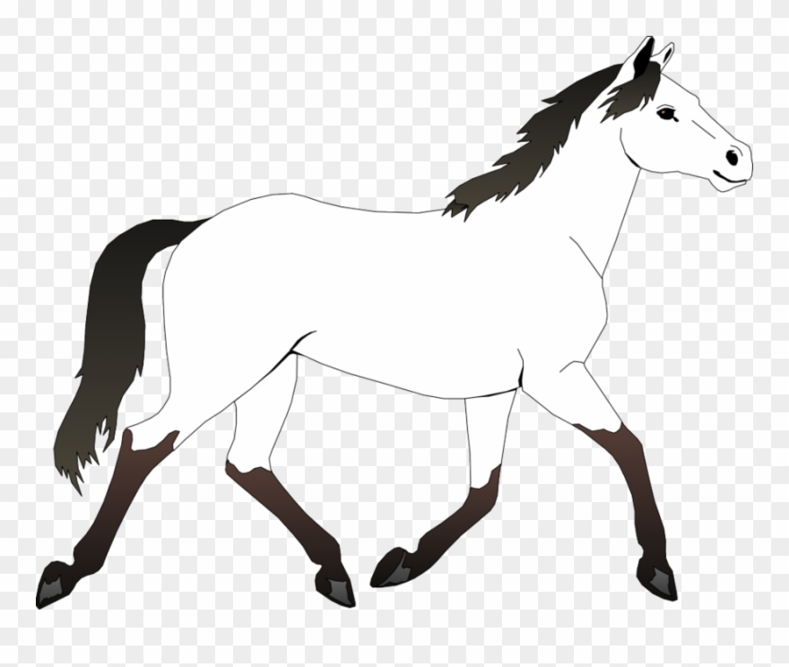 Pages horses free . Mustang clipart horse coloring