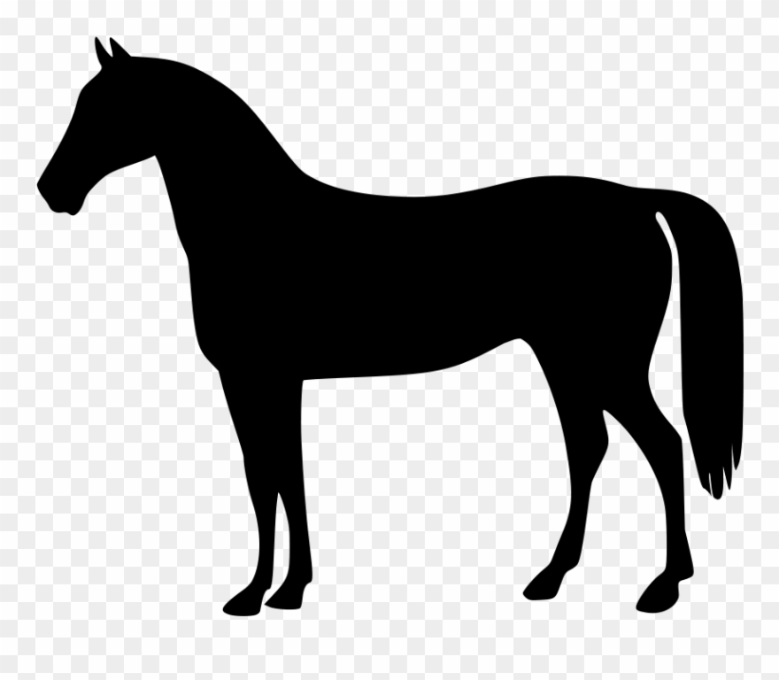 Of horse the and. Horses clipart standing
