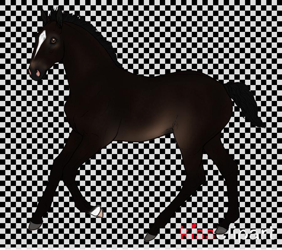 Horse cartoon transport transparent. Horses clipart transportation