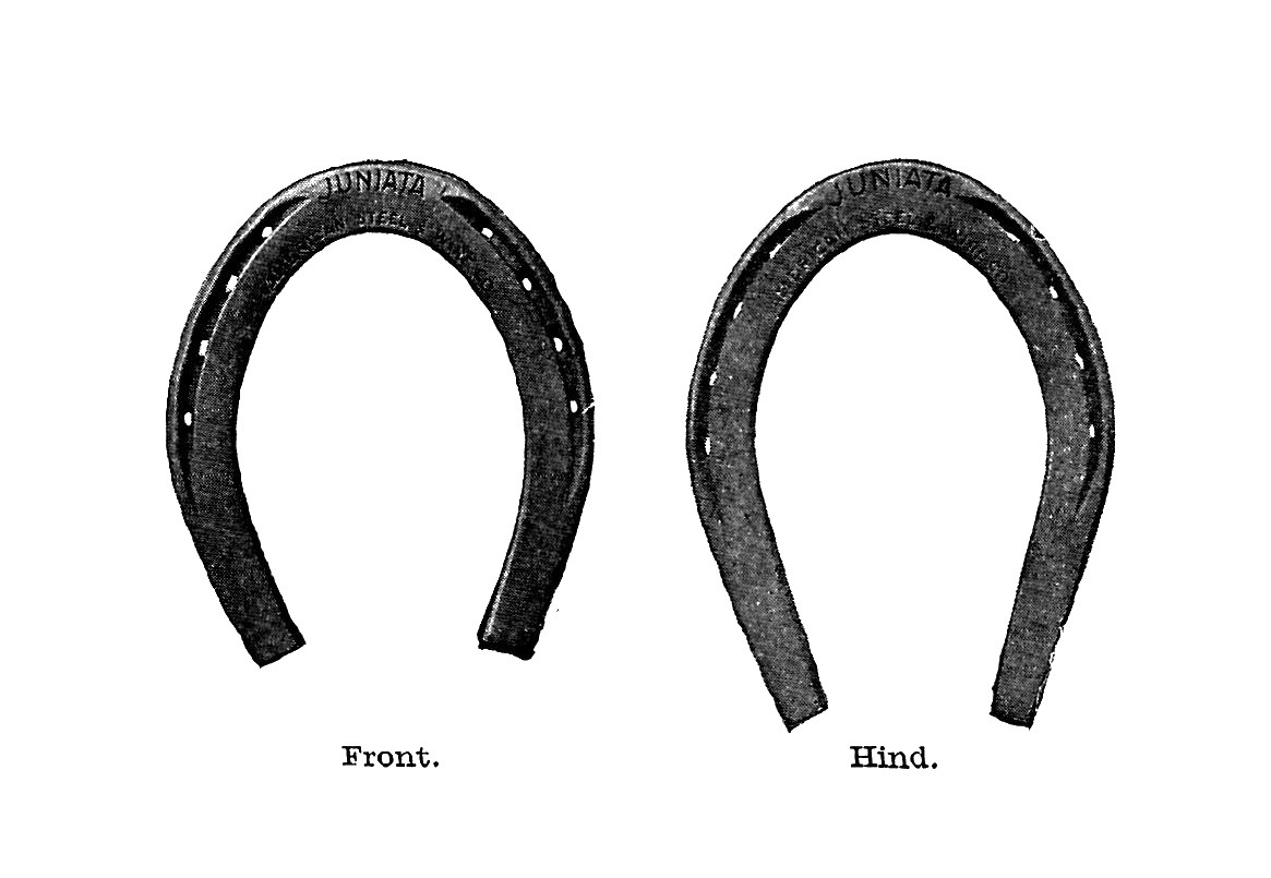 Horseshoe clipart black and white. Digital stamp design free