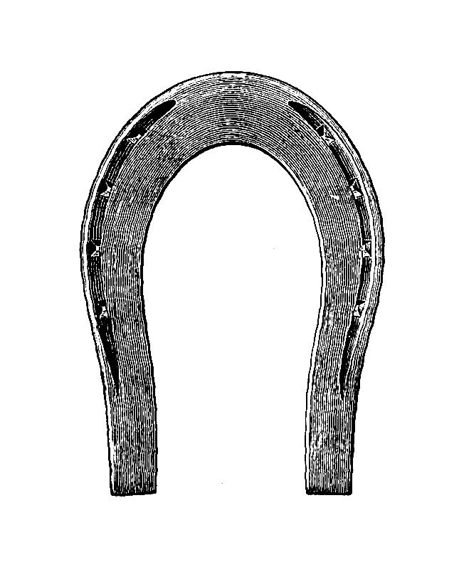 Horseshoe clipart double horseshoe. Free picture of horse