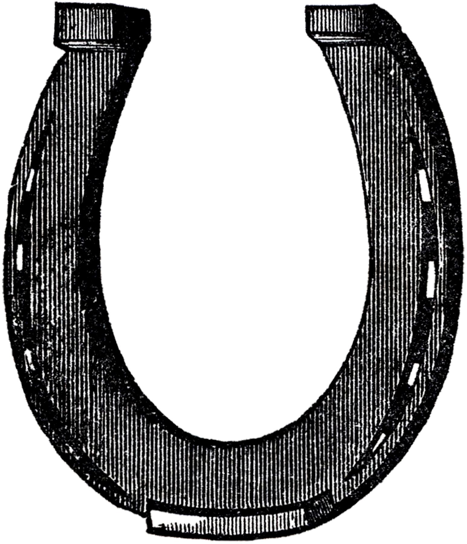 Horseshoe clipart vintage. Free horse shoe clip