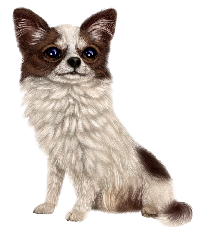 Tube chien chat pinterest. Hospital clipart dog