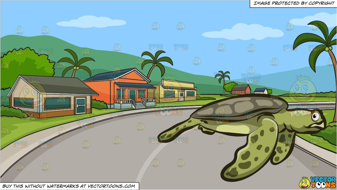 Houses clipart turtle. A big sea and