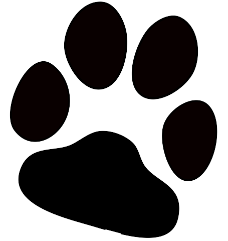 Dog paw transparent stickpng. How to print png files