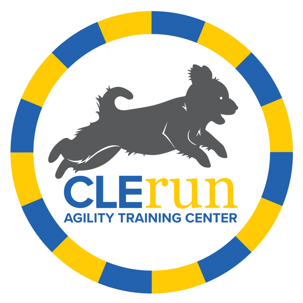 Schedule appointment with clerun. Pet clipart frisbee dog