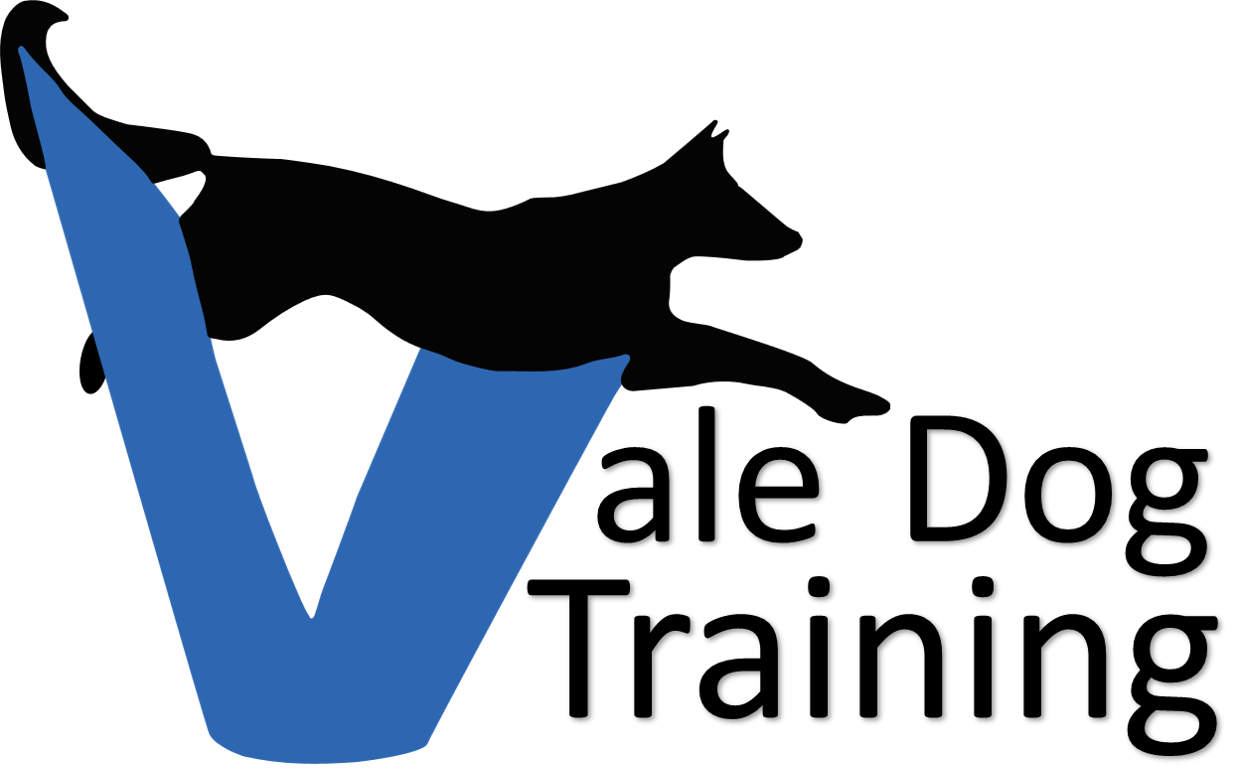 Humans clipart agility. Dog training day care
