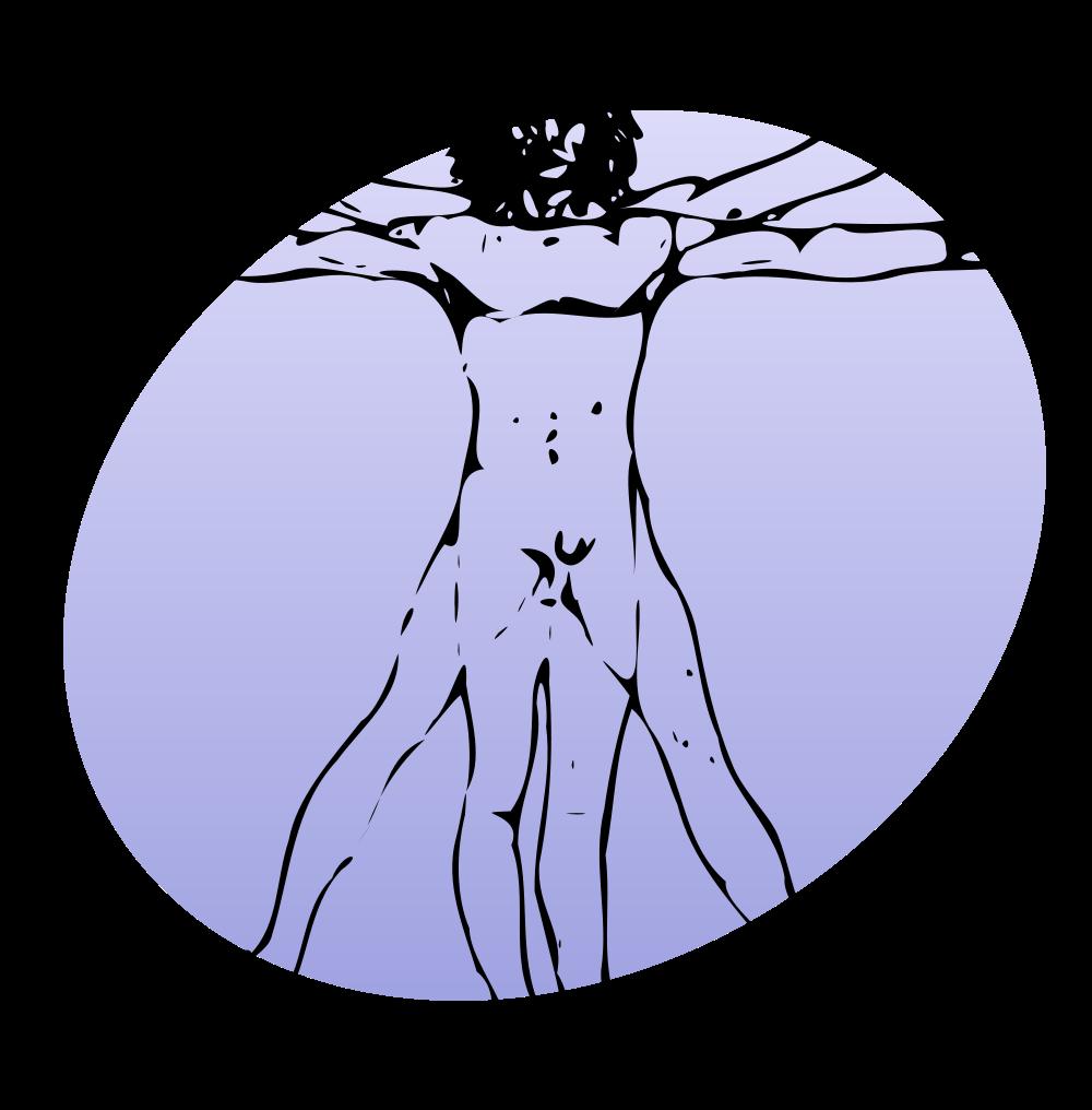File p svg wikimedia. Human clipart blank body