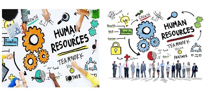 Human clipart employee selection. Techworks engineering pvt ltd