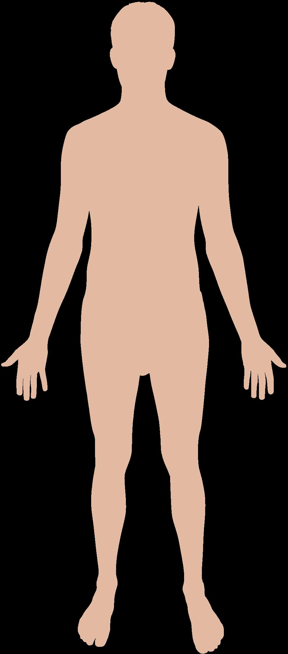 Png hd transparent images. Human clipart human figure