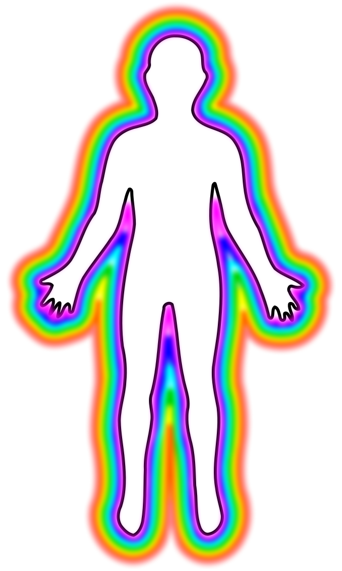 Body female outline clip. Human clipart human shape