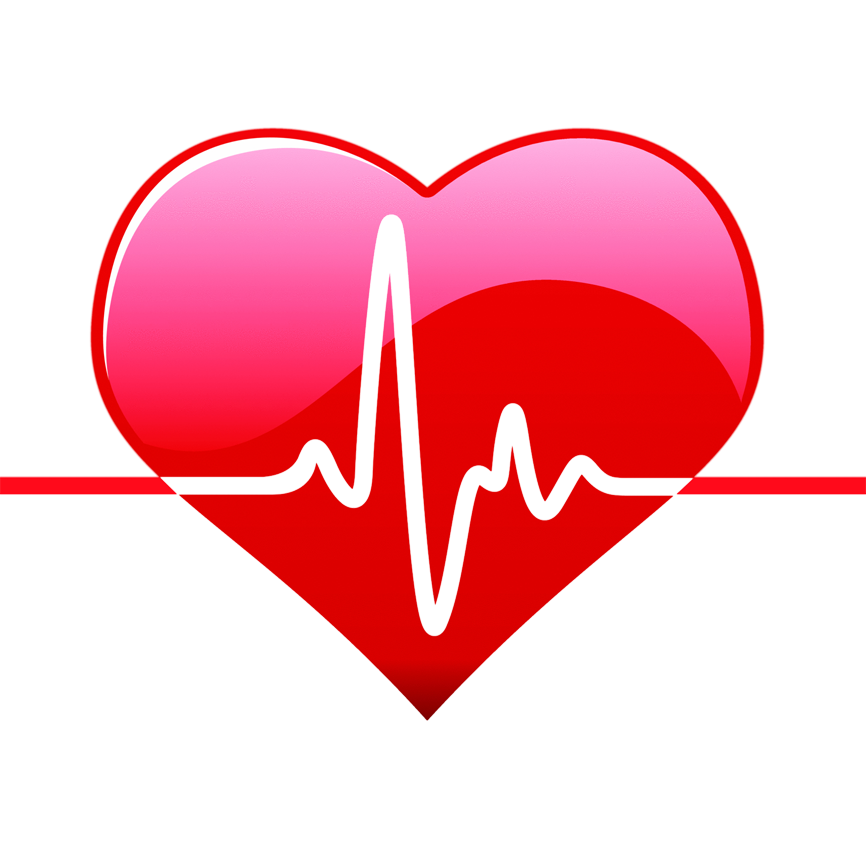 Heart png with line. Human clipart life