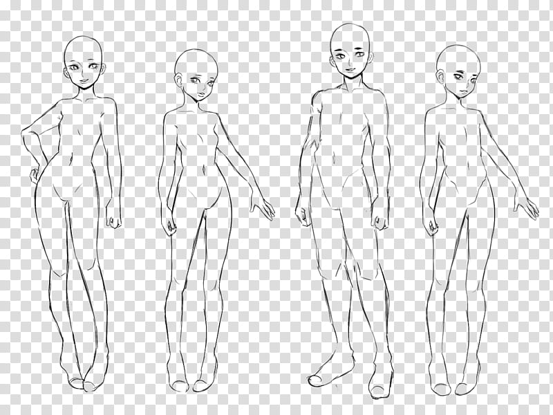 Humans clipart human figure. Fu realistic base four