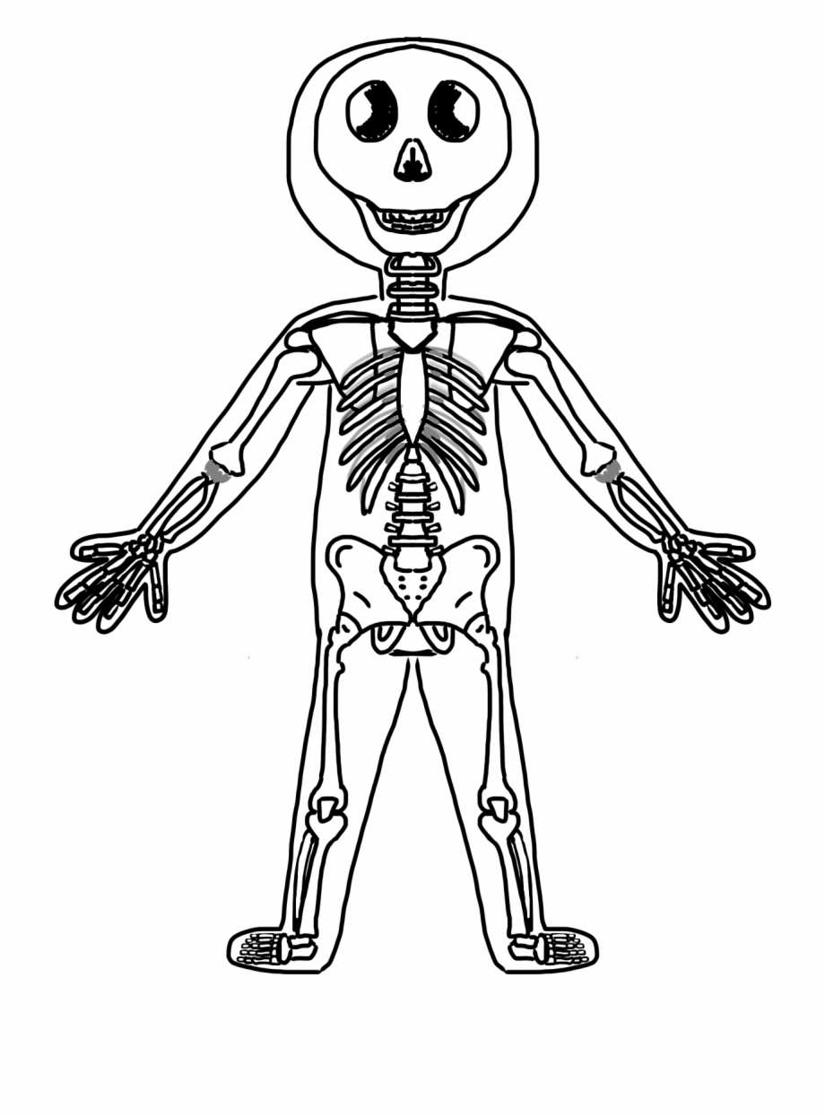 Body black and . Humans clipart human outline