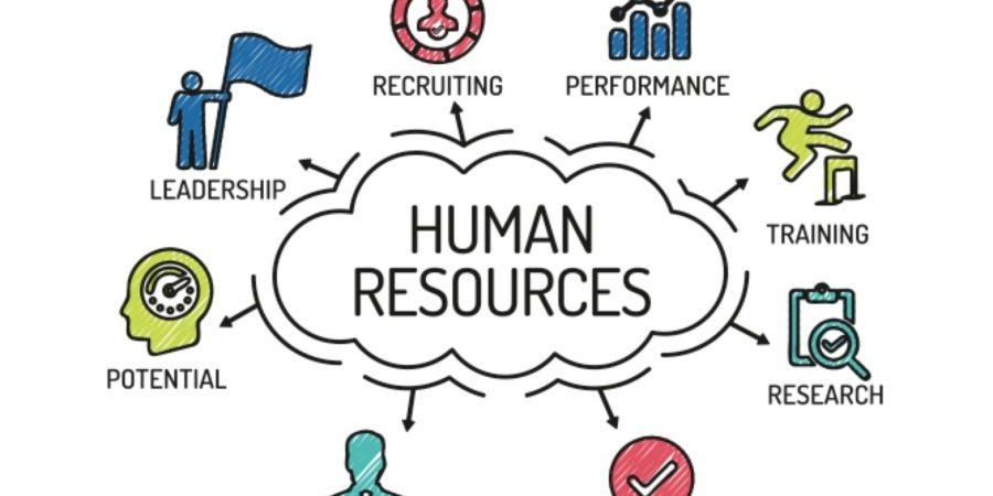 Humans clipart human resource.  management basics every