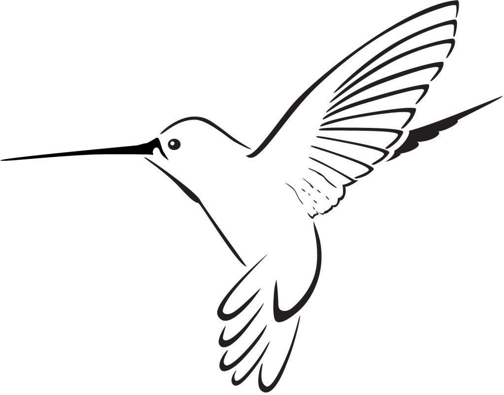Panda free images tattoo. Hummingbird clipart