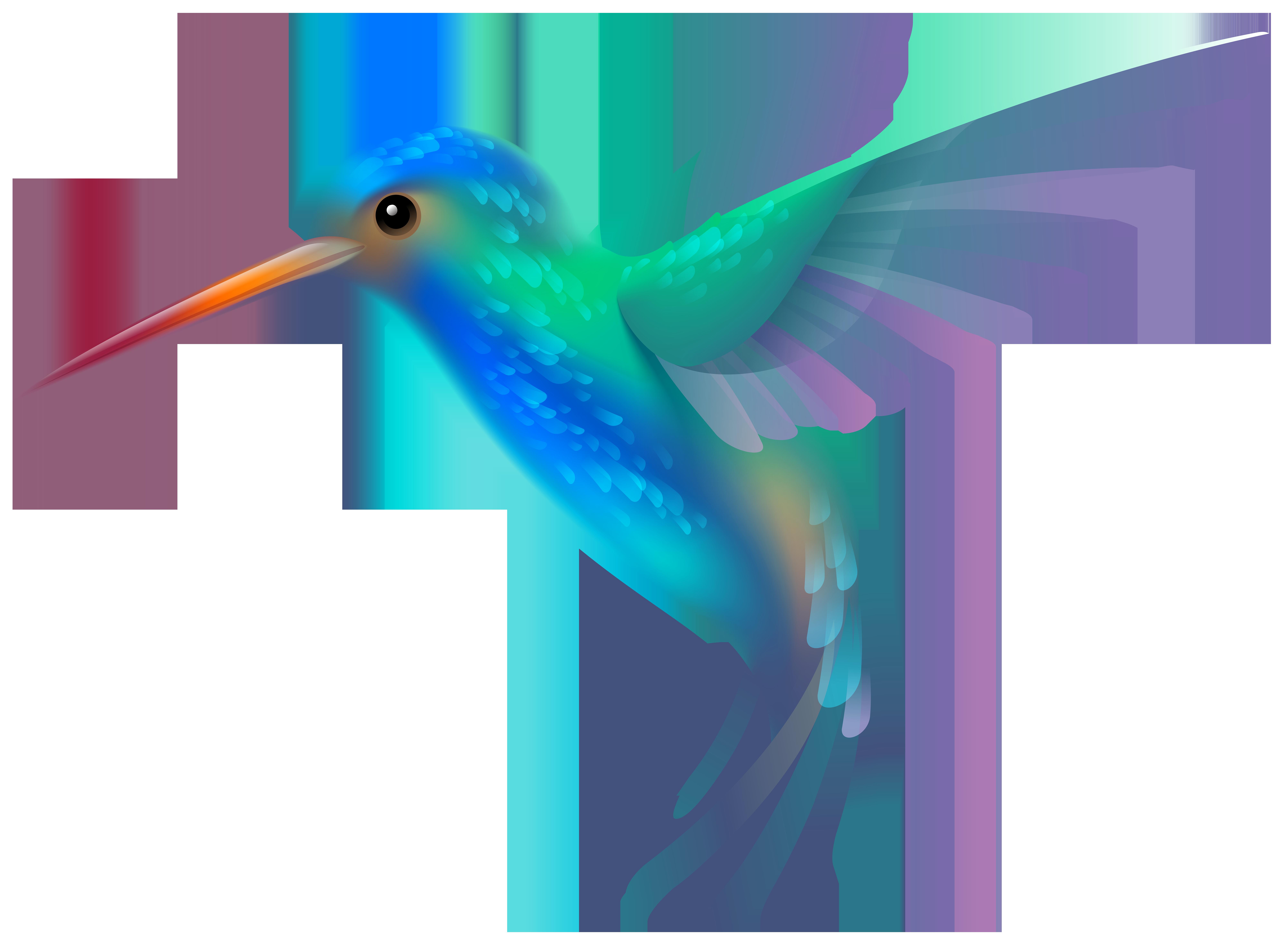 Hummingbird clipart. Png transparent clip art