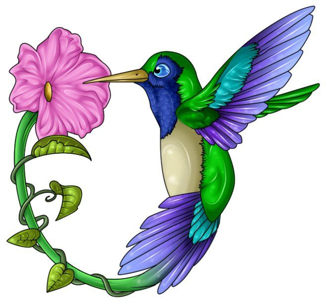 Hummingbird clipart. And flower at getdrawings