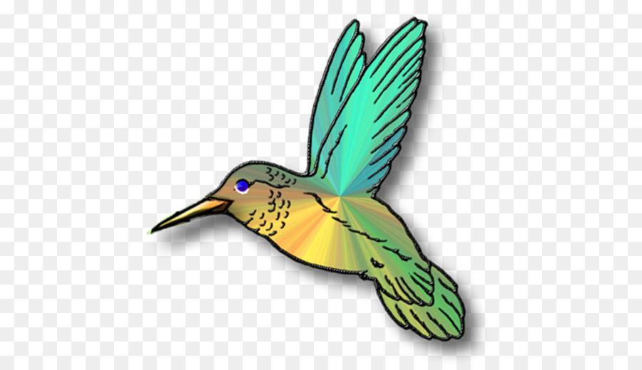 Free content clip art. Hummingbird clipart