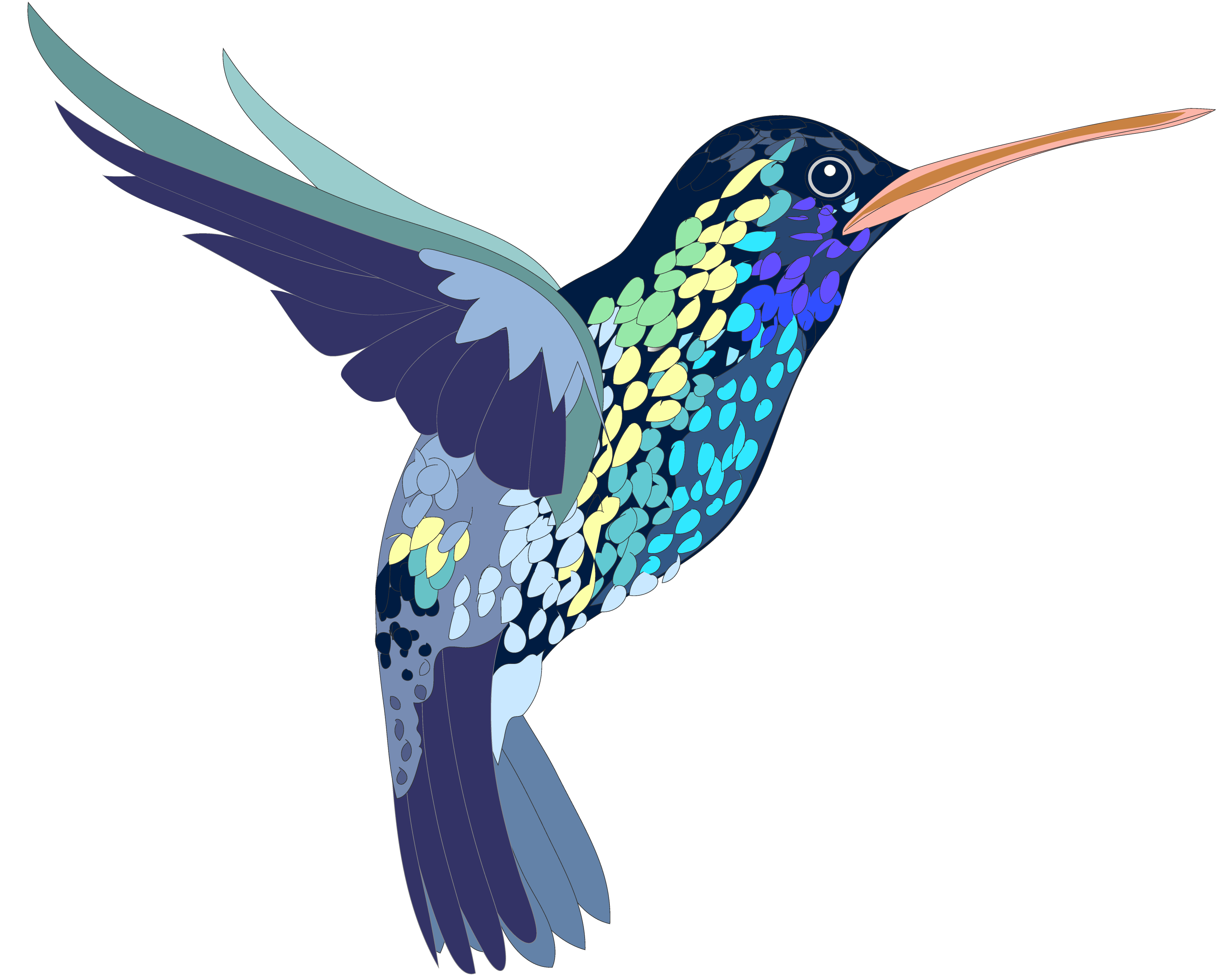 Hummingbird clipart. Clip art creation creatures