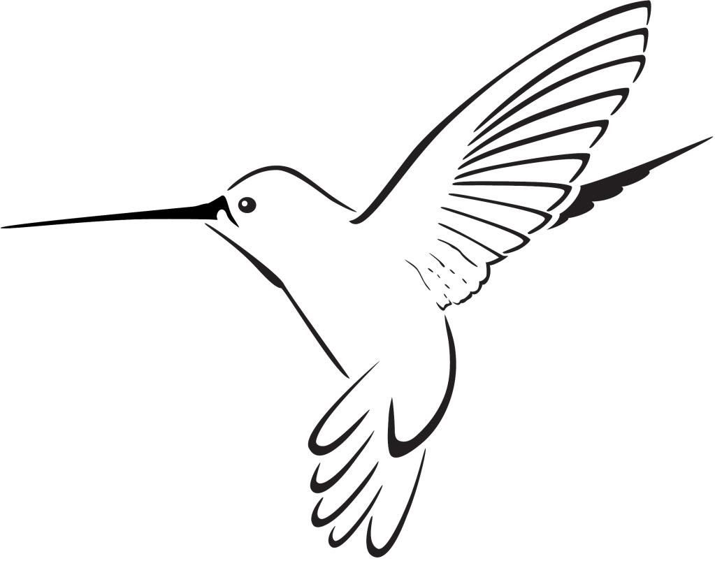 Hummingbird clipart. Panda free images hummingbirdclipart