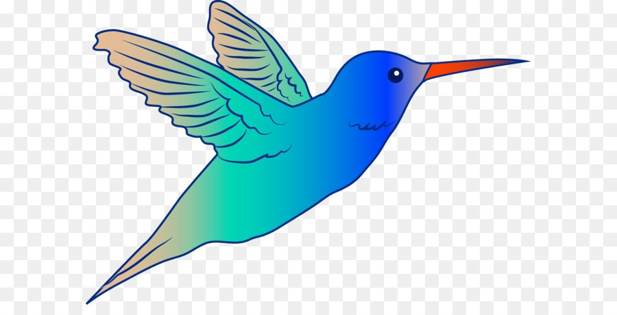 Hummingbird clipart. Drawing royalty free content