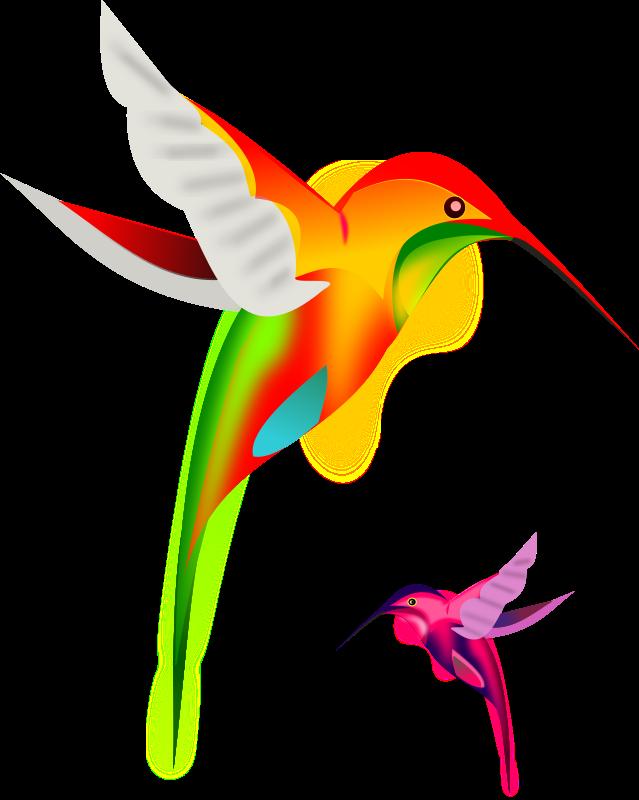 Colibri birds medium image. Hummingbird clipart animated
